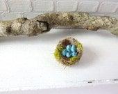 Blackbird nest for dollhouse in 1:12 scale