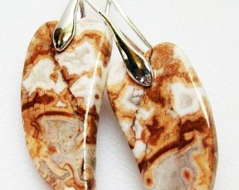 CIJ SALE Rosetta Crazy Lace Jasper Earrings - Unique Earrings - Womens Earrings - Fashion Jewelry - Fall Colors - Gift For Her - Lightweight
