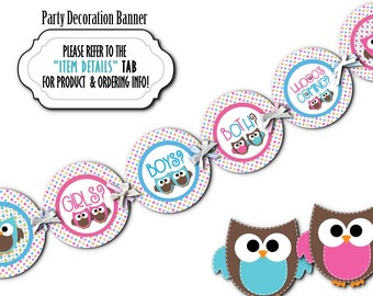 TWINS Baby Gender Reveal Party Banner, Party Bunting, Baby Shower Decoration, Gender Reveal Party, Pink & Blue Baby Owls