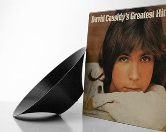 The David Cassidy Greatest Hits GrooveBowl