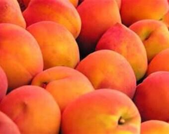 Peach Skin Safe Fragrance Oil 1 ounce