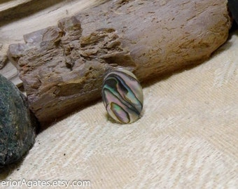 Abalone Shell Tie Tack Hat Pin Lapel Brooch Pin