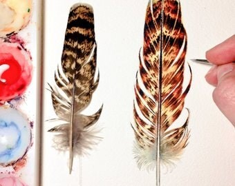 Feather Painting - Original Watercolour feather