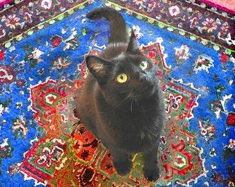 Black Cat Art Print, Cat Artwork, Cat Lover Gift, Cat Wall Art, Giclee Art Print, Cat Decor, Deborah Julian
