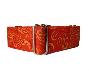 Orange Martingale Dog Collar, Wide Dog Collar, Orange Dog Collar, 1.5 Inch Dog Collar, Whippet Collar, Greyhound Collar