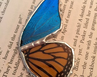 Real butterfly necklace, real butterfly pendant, insect,real butterfly, Real Butterfly Wing Necklace monarch Pendant, real butterly jewelry