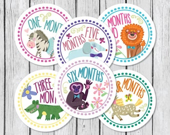 Baby Month Stickers, Monthly Baby Stickers, Onesie Stickers, Monthly Onesie Stickers, New Baby Stickers, Milestone Stickers, New Mom Gift