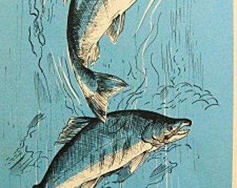 Vintage Blue Fish Book Illustration Picture Beach Lake House Decor - Kokanee Salmon