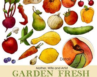 Garden Fresh Clip Art