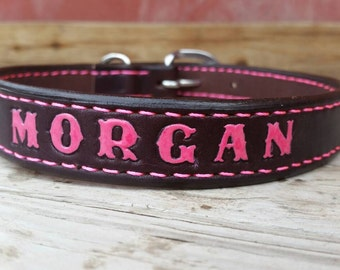 Custom made large breed dog collar