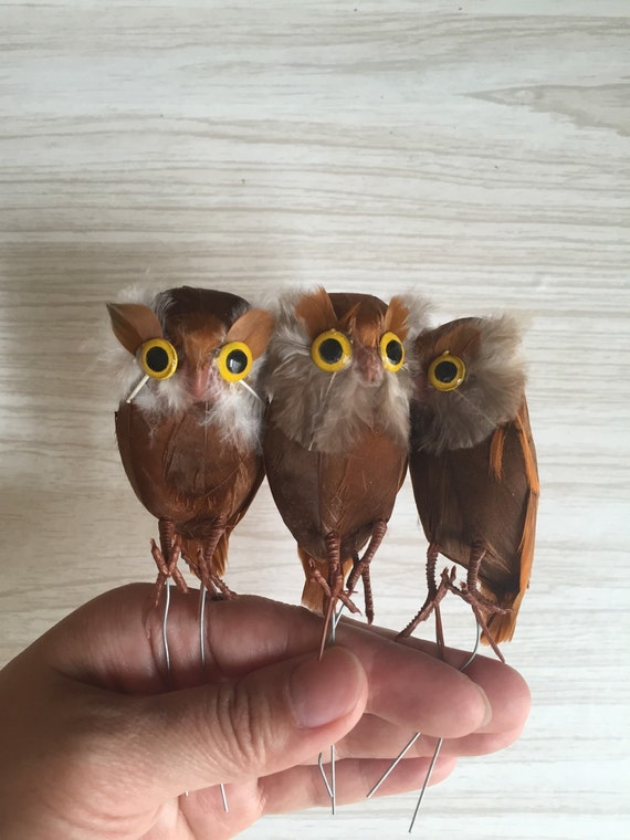 vintage set of brown owls / real feathers / miniature terrarium owl / bird
