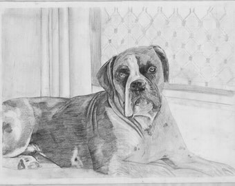 "Pet Pencil Sketch Portrait from Photo- 20""x16"""