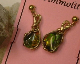 Bright Green, Yellow, Orange and Minor Red Fire Ammolite from Utah Deposit Wire Wrapped Earrings in Gold Filled Wire 496