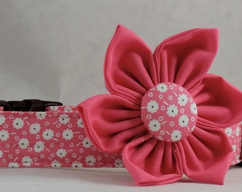 Dog Collar  with Flower - Storybook - All Sizes