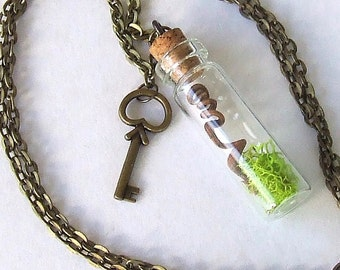 The WITCHES Vine Pendant Terrarium Necklace, Grapevine from a Real Witches Grapevine,Wicca Necklace, Wicca Jewelry