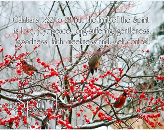 Fruit of Spirit, Galatians 5-22 original, scripture photo collage fine art image winterberries birds robins snow by Gina Waltersdorff