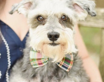 Preppy Madras Bow Tie Dog Collar, Dog Bowtie Collar, Nautical Dog Collar, Plaid Dog Bow Tie Collar, Dog Wedding Collar, Custom Dog Collar