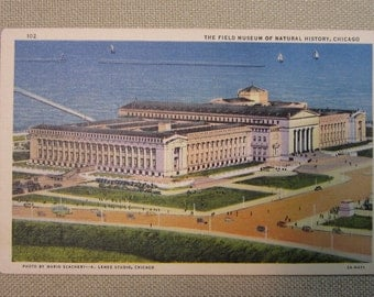 The Field Musuem of Natural History, Chicago Printed on Linen Postcard