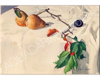 """READY TO SHIP Original Watercolor Painting Still Life with Two Dark Yellow Pears"""" Wall Art Decor, Kitchen Decor Shabby Chic 10"""" x 12"""""""