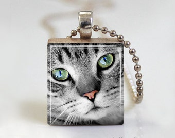 Sweet Little Gray Kitten - Scrabble Tile Pendant - Free Ball Chain Necklace or Key Ring