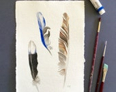 Australian bird feathers, watercolour painting, original art