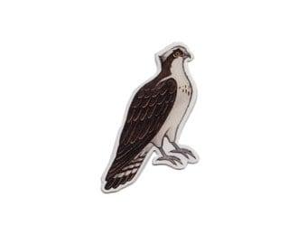 Osprey Bird Magnet / Nature Art / Refrigerator Magnet / Office Magnet / Party Favor / Small Gift