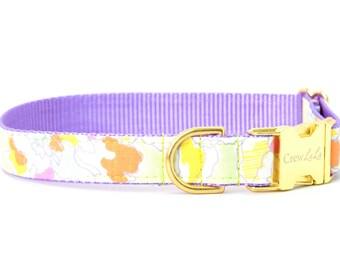 Crew LaLa™ Summer Sherbet Dog Collar