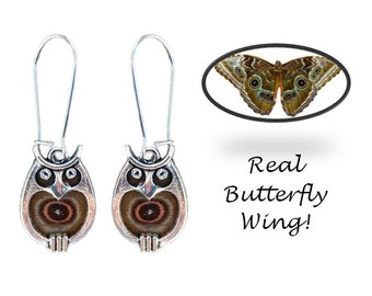 Real Butterfly Wing Owl Earrings - Blue Morpho, Hooty Owl, Owl Jewelry, Owls, Animals, Nature, Natural