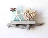 Natural Driftwood Shelf / Size SMALL