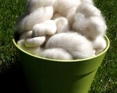 4oz Natural Romney Roving ( hand carded)