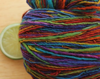 Dark Side of the Rainbow - Handspun Superwash Wool Yarn Sport Weight Skein