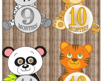 Printable Monthly ANIMAL Baby Iron On Months 1-12, Monthly Baby Stickers, Animal Baby Month Stickers, Onesie Stickers, Baby Iron On