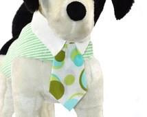 Green Seersucker Dog Vest Harness with White Collar and Print Tie
