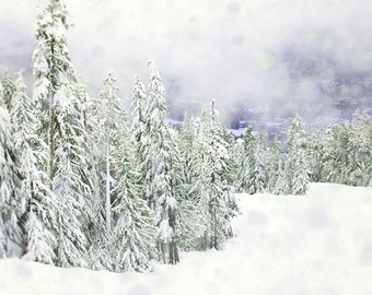 Winter Forest Photography, Nordic Wall Art, Ski Lodge Decor, Mountain Photograph, Whistler Art Print, Blue Green White Artwork, Snow Photo