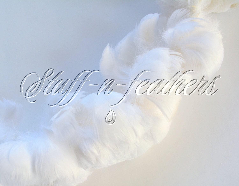 White craft feathers bulk -  22 50