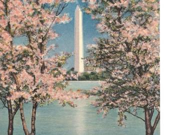 Vintage Linen Postcard.....Washington Monument and Cherry Blossoms, Washington, D.C....Used, 1938....... item #3482