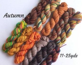 Autumn - 11 Sock Yarn Mini skeins, 25 yds each