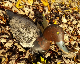 Antique Evans Duck Decoy 1920s Duck Decoy 1930s Duck Decoy Vintage Redhead Drake Duck Decoy