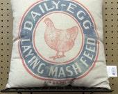Hen pillow laying egg