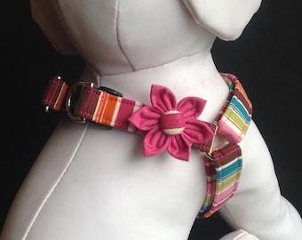 Step in Dog Harness Flower Set / Colorful Stripe Pattern - Size XXS, XS, S, M