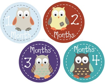 Month Stickers Baby Monthly Stickers Owls Baby Milestone Stickers Baby Shower Gift