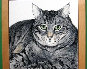"""Cat Portrait  8"""" TILE set in KEEPSAKE box"""