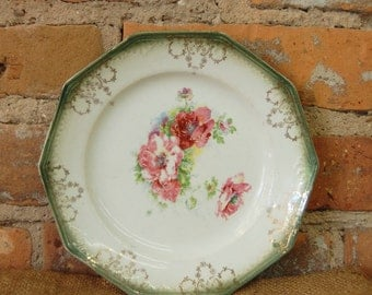 Limoges China Wild Rose Porcelain Plate