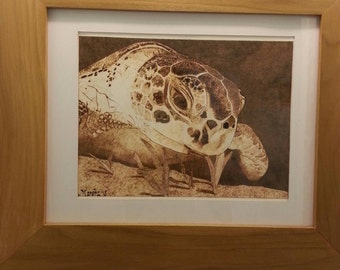 Sea Turtle, burning on paper, wood burn, pyrography, art, unique framed art