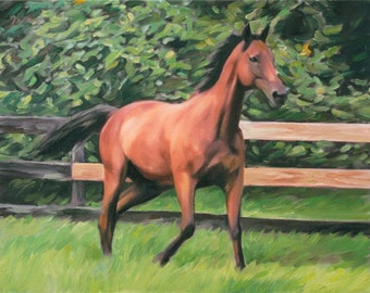 Horse Art Oil Painting on Canvas from Your Photo - Custom Portrait - Hand Painted & Stretched