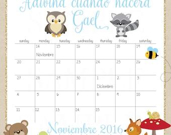 Woodland Baby Shower Prediction Baby Birth date Due Date 2016 Calendar -Printable JPG File