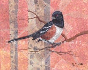 Spotted Towhee, Songbird Painting, Watercolor Bird, Bird Art Print, Bird Painting, Wildlife Painting, Animal Art Print, Bird illustration