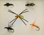 Fly Fishing - Fly Fishing Flies - Combination Pack of 5 Hand-tied Flies - Nymphs, Dry and Wet Flies - Ant, Gnat, Spider, Nymph - Valentine's