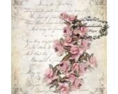 Digital Floral Scrapbook Paper,  Vintage Pink Rose Digital Papers,  Digital French Paper, Decoupage Paper, Card Making . No. 320