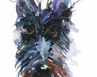 Scottie Dog   Art Print 8X6 inch Scottish Terrier #141